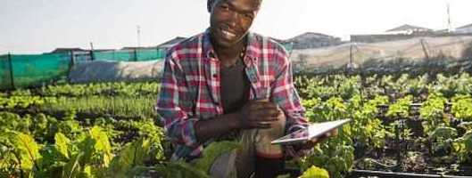Vodacom's new tech for local farmers